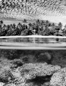 Half Submersed photography